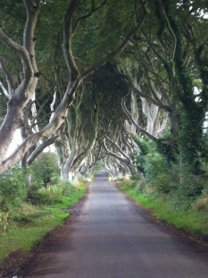 The Dark Hedges (Ballymoney, County Antrim) doubles as the road Arya took to escape King's Landing.